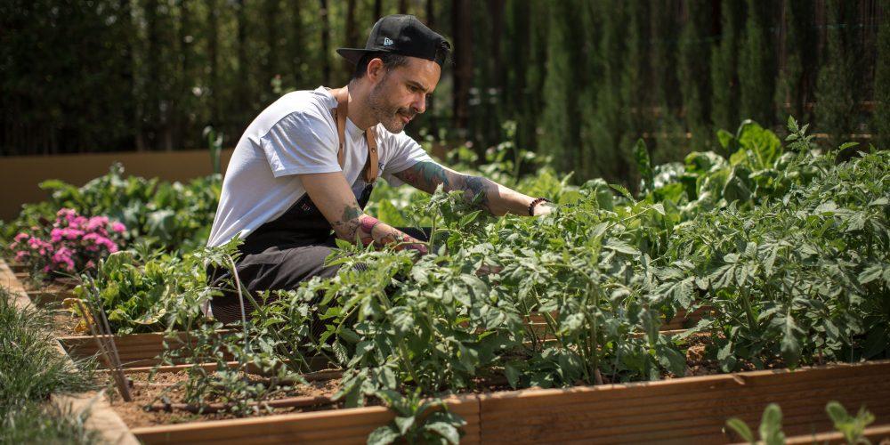 El chef Juan Llorca, nuevo fichaje para El Innovadero